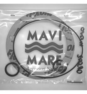 Seal Kit for GM01-MRA Pump